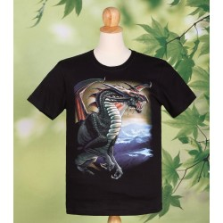 Flying Dragon T Shirt