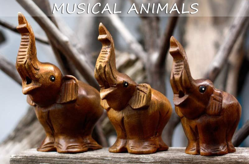 Musical Instruments - Elephants