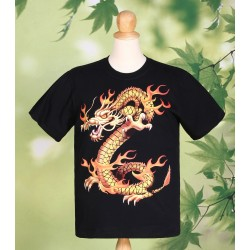 Dragon Fire T Shirt