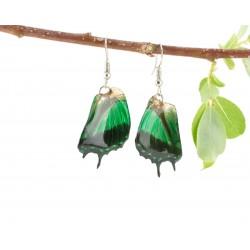 Real Butterfly Wing Green Swallow Tail Earrings
