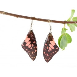Real Butterfly Wing Pink Pathysa Antiphates Earrings