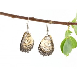 Real Butterfly Wing Hindtail Gradient Earrings