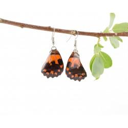 Real Butterfly Wing Orange Sunset Earring