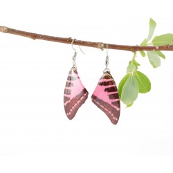 Real Buterfly Wing Pink Graphuim Earrings