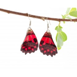 Red Forwing Real Butterfly Wing Earring