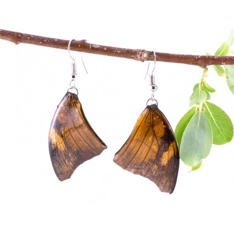 Brown Forewing Butterfly Earring