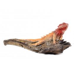 Crawling Maroon Red Iguana