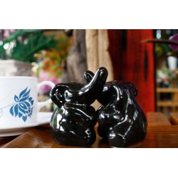 Elephant Hugging Black Salt and Pepper Shakers
